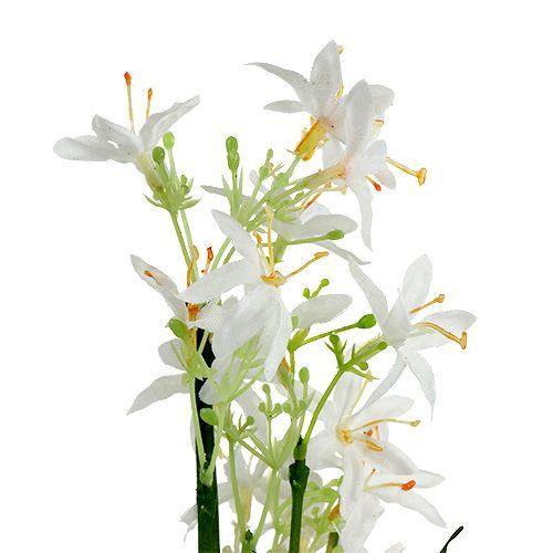Cespuglio di erba con fiori verdi, bianco 3 pezzi