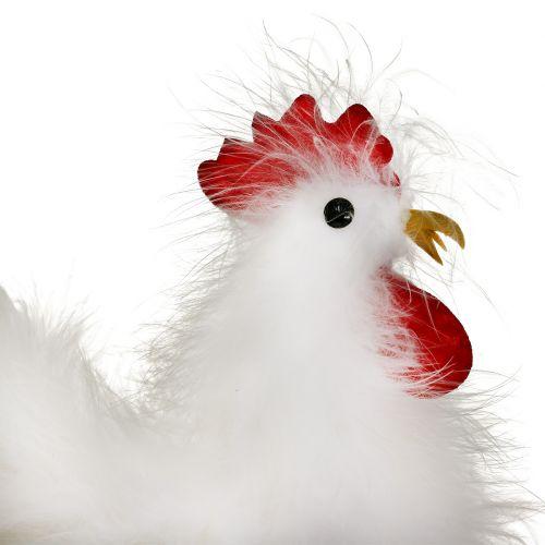 Gallina gallo con piume bianche 17 cm, 21 cm 2 pezzi