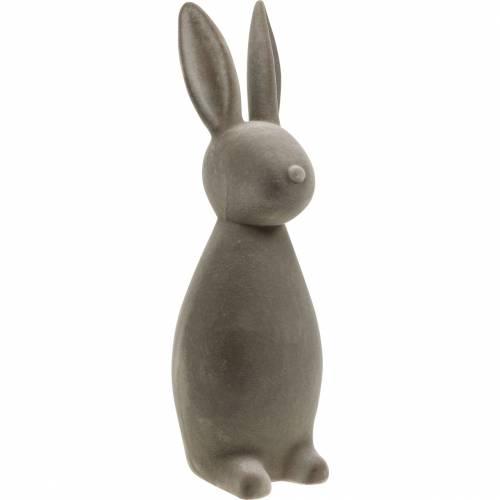 Coniglietto grigio scuro floccato coniglietto pasquale decorazione pasquale decorazione tavola Pasqua