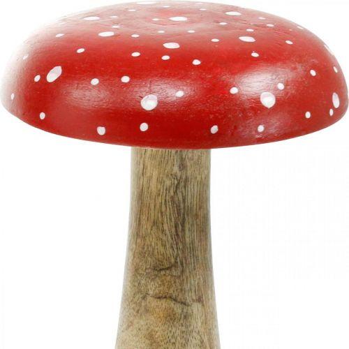 Fungo grande decorazione autunnale in legno di agarico Ø14cm H24cm