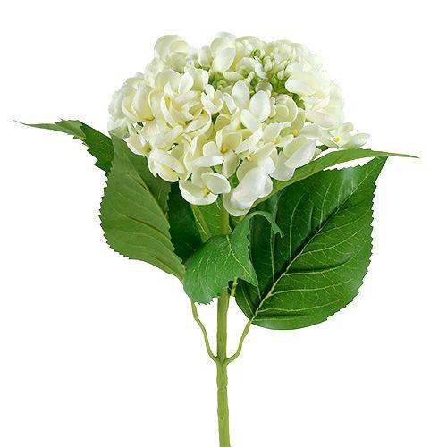 Ortensia 60 cm bianca