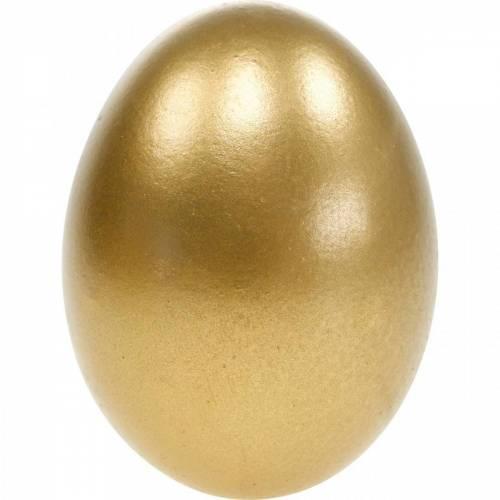 Uova di gallina Uova soffiate Decorazione pasquale Colori diversi 10pz