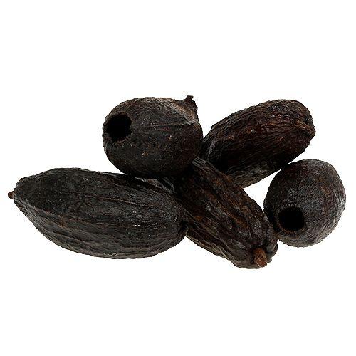 Frutta cacao natura 10-18 cm 15 pezzi