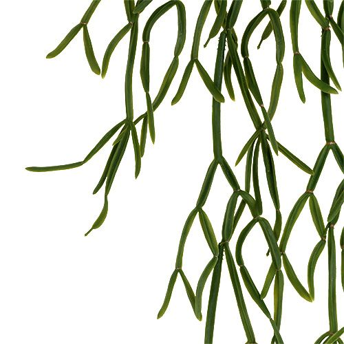 Appendino cactus verde 115 cm
