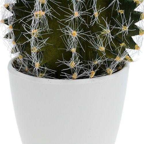 Cactus in vaso verde 14cm