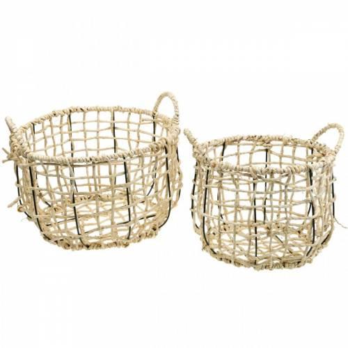 Cesto di vimini in alghe, cesto decorativo, cesto portaoggetti, cesto manico rotondo Ø36 / 28, set di 2