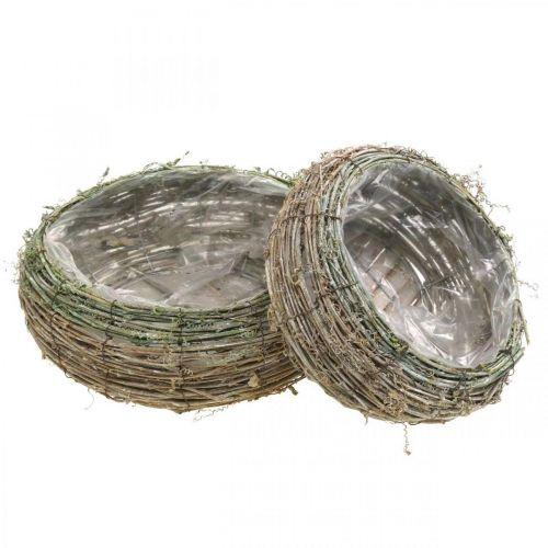 Cesto per piante rotondo vite bicolore, legno Ø18 / 25cm, set di 2