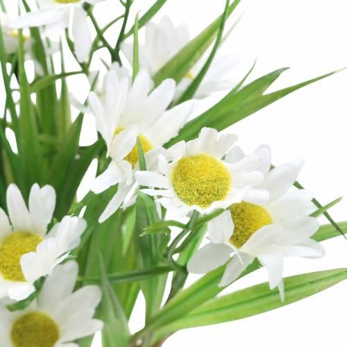 Mazzo di margherite con erba decorativa 37 cm
