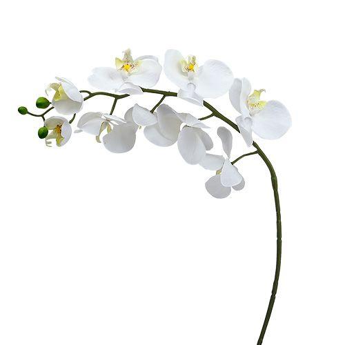 Orchidea falena 75 cm bianca