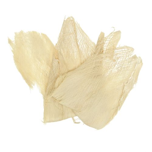 Fibra di palma sbiancata 250g