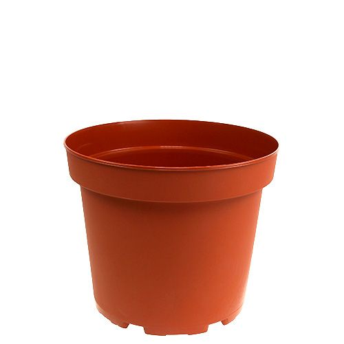 Vaso per piante vaso interno in plastica Ø10,5cm 10 pezzi