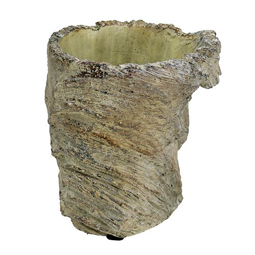 Vaso per alberi tronco d'albero Ø11,5cm H14cm 2 pezzi