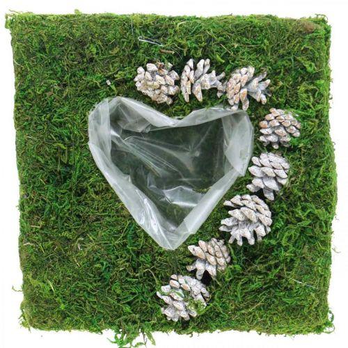 Cuscino per piante cuore muschio e pigne, bianco lavato 25 × 25 cm