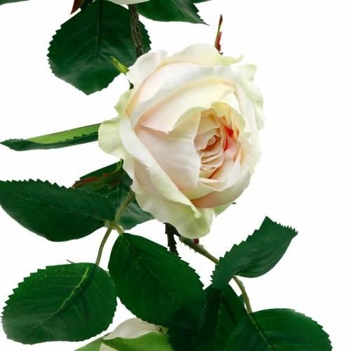 Romantica ghirlanda di rose, fiore di seta, viticcio di rosa artificiale 160 cm