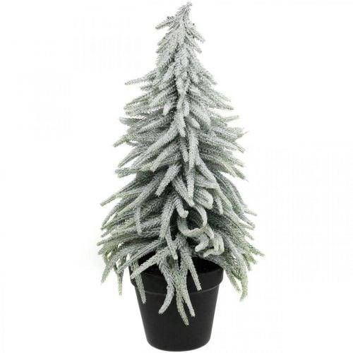 Abete invernale in vaso, addobbo natalizio, abete con neve H45cm