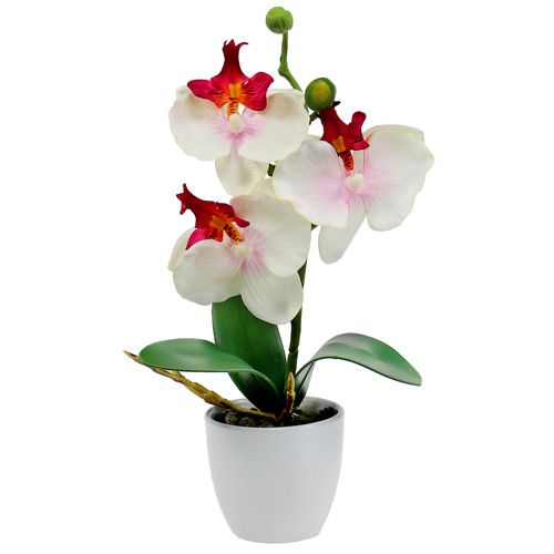 Decorazione da tavola orchidea in vaso color crema H29cm