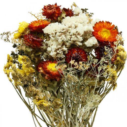 Bouquet di fiori secchi Fiori eterni e lavanda marina 125 g di fiori secchi