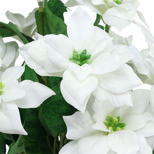 Poinsettia Bouquet bianco L45cm
