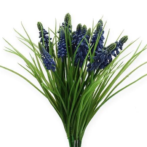 Giacinti d'uva 28 cm - 30 cm blu 15 pezzi