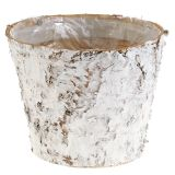 Vaso decorativo betulla sbiancato Ø18cm H15cm