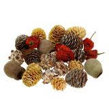 Mix esotico di frutta secca e coni natura 500g