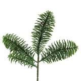 Nobilis ramo di abete verde artificiale 24 cm 12 pezzi