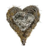 Pianta cuore di vite e muschio natura 20 cm x 14 cm