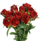 Rosa rossa 42 cm 12 pezzi