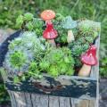 Set decorativo di agarico di mosca arancione, verde, rosso 10/12 / 14,8 cm